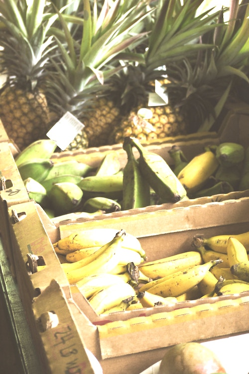 bananas and pineapples in basket - graphic for how to make money as a kid offline or online