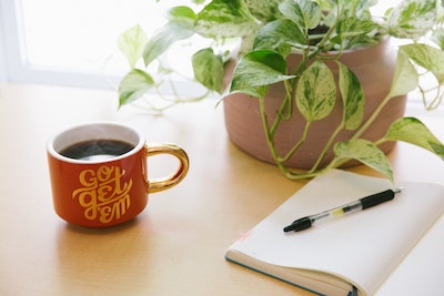 genius bloggers toolkit review blog pos -blog graphic with a cup of tea and money plant on the side